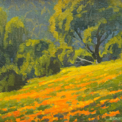 Hillside Poppies, Oil on panel, 9 x 12 inches