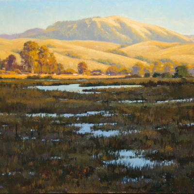 Nicasio Wetlands, Oil on canvas, 24 x 30 inches