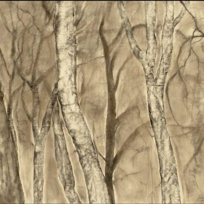 Moonlight Mist, Mixed media and charcoal on panel, 36 x 81 inches